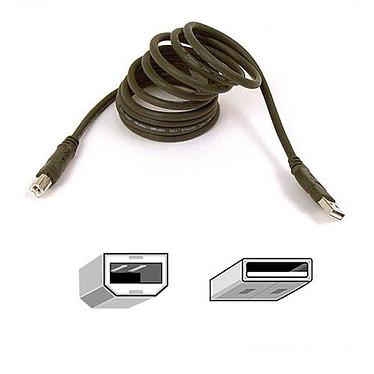 Belkin câble USB 2.0 Type AB (Mâle/Mâle) - 1.8 m