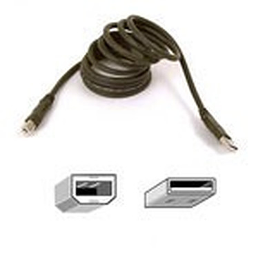 Belkin câble USB 2.0 Type AB (Mâle/Mâle) - 1,8 m