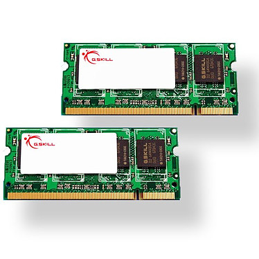 G.Skill SODIMM 4 Go (kit 2x 2 Go) DDR2-SDRAM PC2-5300 - F2-5300CL4D-4GBSQ G.Skill SODIMM 4 Go (kit 2x 2 Go) DDR2-SDRAM PC2-5300 - F2-5300CL4D-4GBSQ (garantie 10 ans par G.Skill)