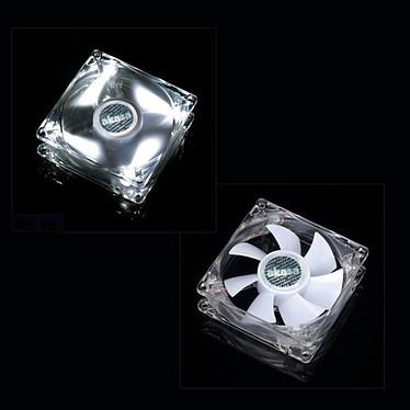 Akasa AK-FN054 Akasa AK-FN054 - Ventilateur de boîtier 8 cm Transaprent/Blanc
