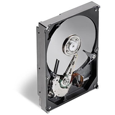 Seagate Barracuda 7200.12 SATA 3Gb/s - 1 To Seagate Barracuda 7200.12 SATA 3Gb/s - 1 To 7200 RPM 32 Mo Serial ATA II (bulk)