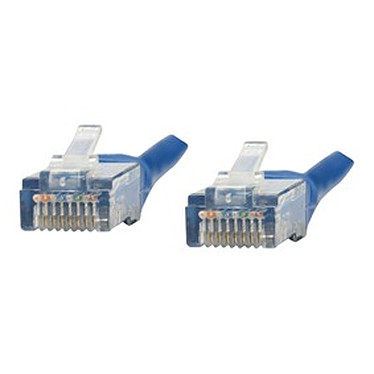 Câble RJ45 catégorie 5e U/UTP 1 m (Bleu)