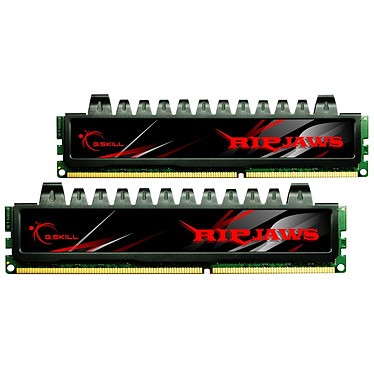 G.Skill RH Series RipJaws 8 Go (kit 2x 4 Go) DDR3-SDRAM PC3-10666