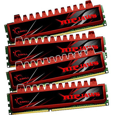 G.Skill RL Series RipJaws 16 Go (4x 4Go) DDR3 1333 MHz