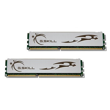G.Skill ECO Series 4 Go (2x 2Go) DDR3 1333 MHz