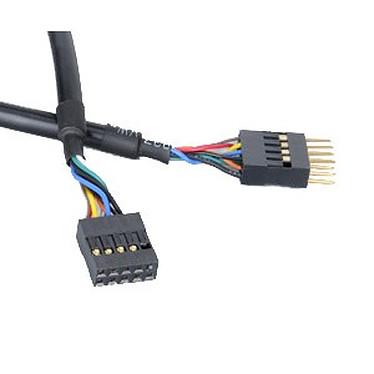 Akasa EXUSBI-40 Câble USB interne