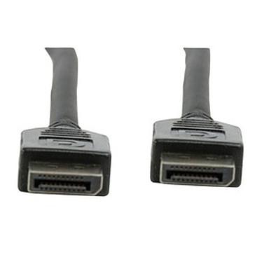 Câble DisplayPort mâle/mâle (1 mètre)
