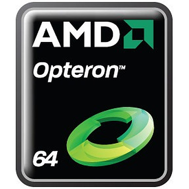 AMD Opteron 6274 (2.2 GHz)