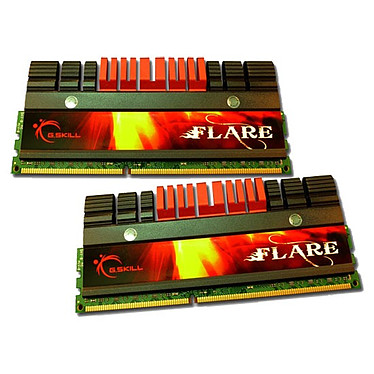 G.Skill FLARE Series 4 Go (2x 2Go) DDR3 2000 MHz G.Skill FLARE Series 4 Go (kit 2x 2 Go) DDR3-SDRAM PC3-16000 - F3-16000CL7D-4GBFLS (garantie 10 ans par G.Skill)
