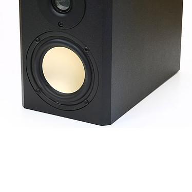 Avis Scythe Kro Craft Speaker