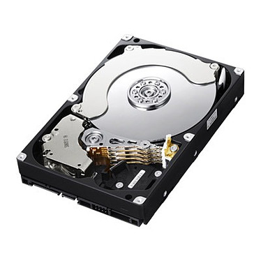 "Samsung SpinPoint F4 EcoGreen (HD204UI) 2 To SATA 3 Gb/s Disque dur 3.5"" 2 To 5400 RPM 32 Mo Serial ATA II (bulk)"