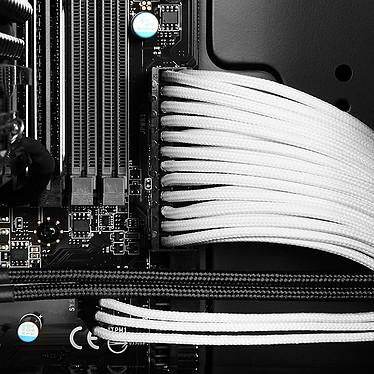 Avis BitFenix Alchemy White - Câble d'alimentation gainé - Molex vers 3x 3 pins - 20 cm