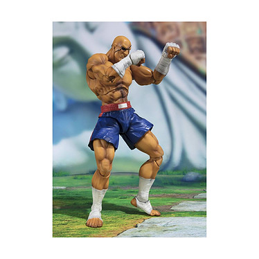 Street Fighter - Figurine S.H. Figuarts Sagat Tamashii Web Exclusive 17 cm Figurine Street Fighter, modèle S.H. Figuarts Sagat Tamashii Web Exclusive 17 cm.