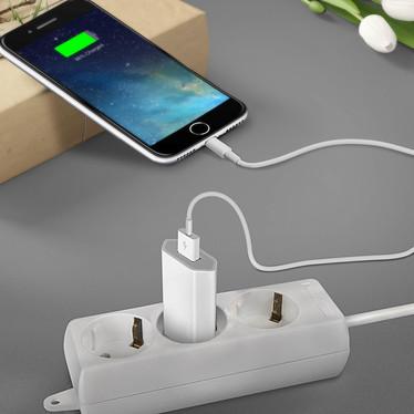 Acheter Avizar Chargeur secteur Blanc pour Tout les iPhones avec connecteur Apple lightning