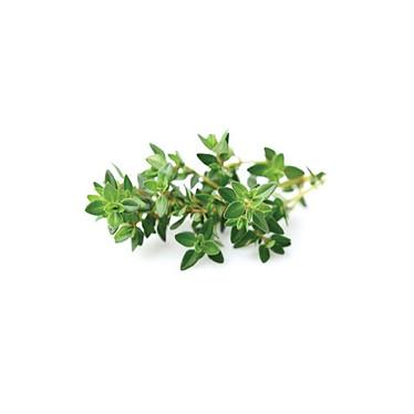 Click and Grow Recharge Triple De Thym Pour Smart Garden CLG_SG3_THYM Pack de 3 recharges Thym pour Smart Garden 3 de Click and Grow