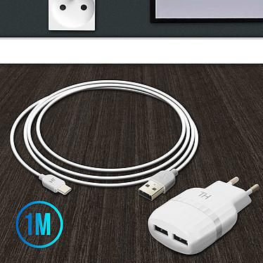 Avis Avizar Chargeur secteur Blanc pour Tous les smartphones et toutes les tablettes
