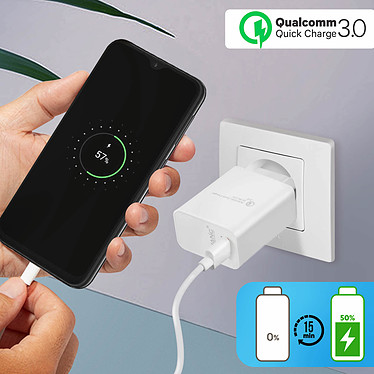 Avizar Chargeur secteur Blanc pour Tous les appareils équipés d'un port micro USB pas cher