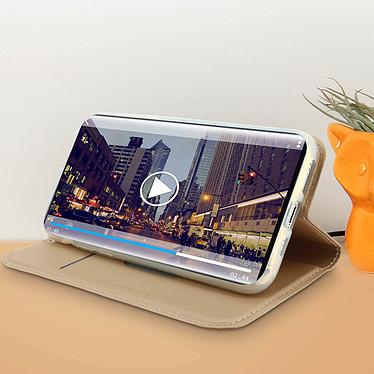 Acheter Avizar Etui folio Dorée Éco-cuir pour Apple iPhone 11 Pro Max