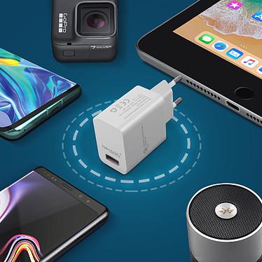 Acheter Avizar Chargeur secteur Blanc pour Tous les appareils équipés d'un port micro USB