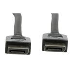 DisplayPort 1 m Longueur du câble