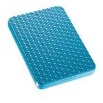 """Samsung G2 Portable 2""""1/2 320 Go - Coloris bleu (USB 2.0)"""